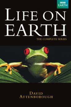 BBC. Жизнь на Земле с Дэвидом Аттенборо